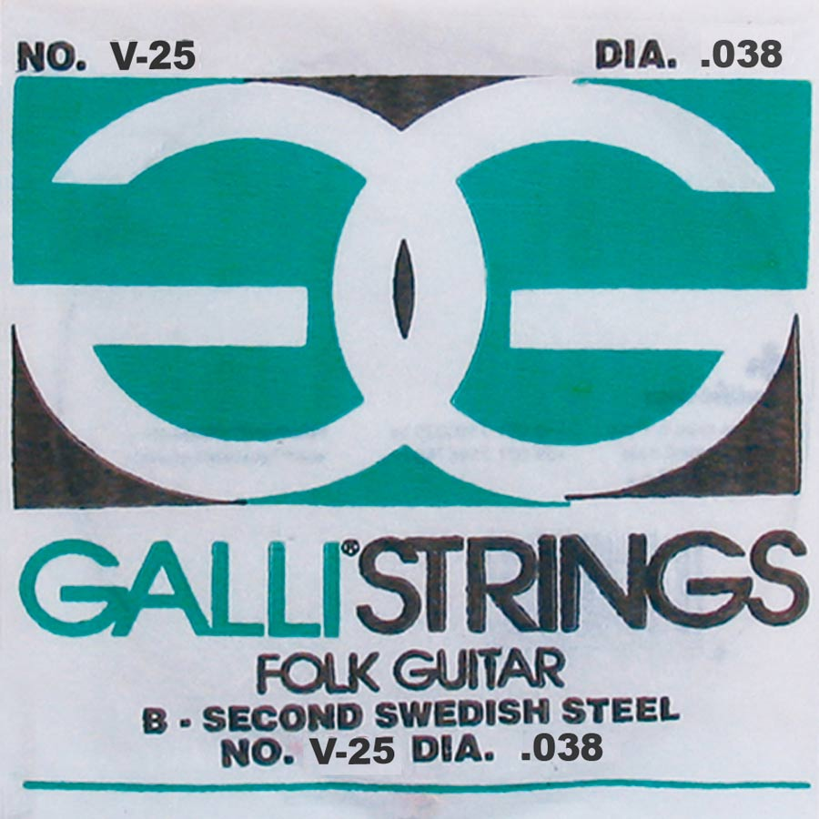 Galli Folk Guitar V-025