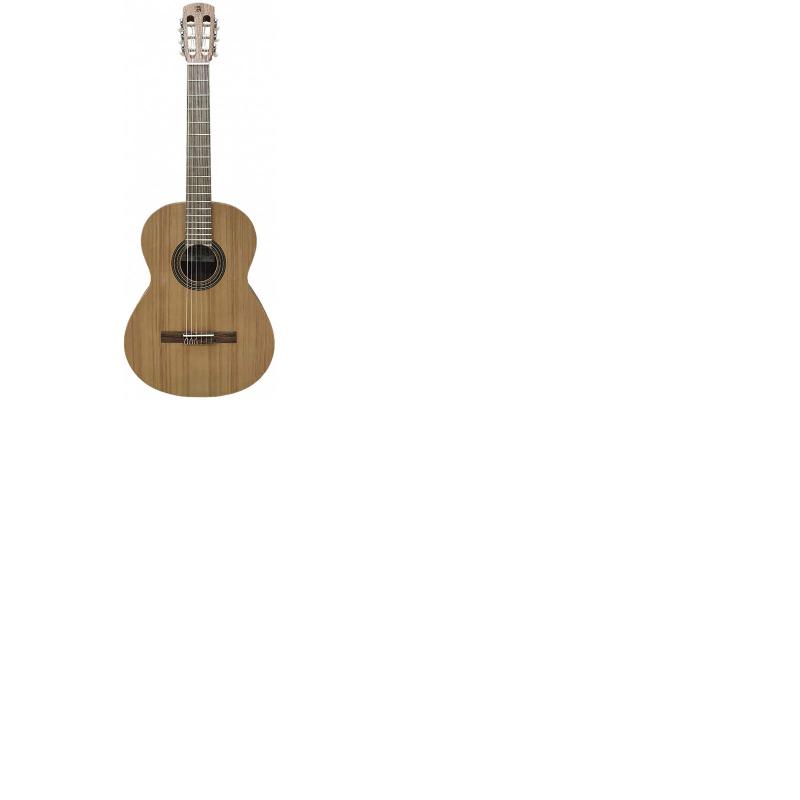 LAQANT gitaar college 2 bij Alhambra
