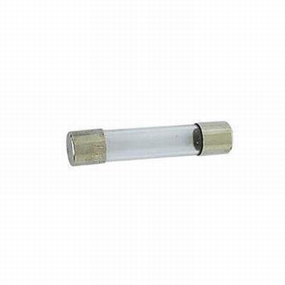 Glas zekering 5 X 20 mm. 0,5 A