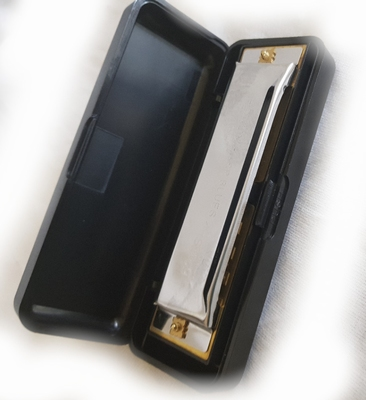 Stagg Blues harp A