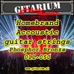 Gitarium huismerk Accoustic Phosfhor Bronze 011