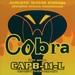 Cobera snarenset akoestische gitaar, phosphor bronze wound,