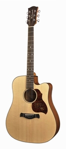 Richwood Master Series D-20-CE
