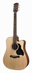 Richwood Master Series D-40-CE